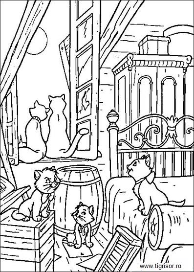 pisicile_aristocrate_11